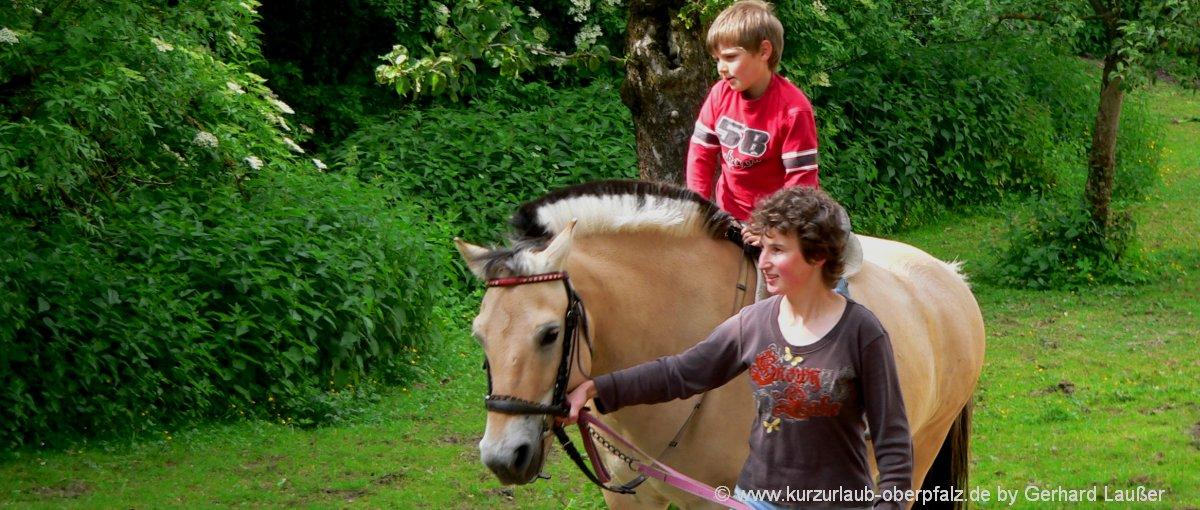 bauernhofurlaub-oberpfalz-reiterferien-kinderurlaub-pferde