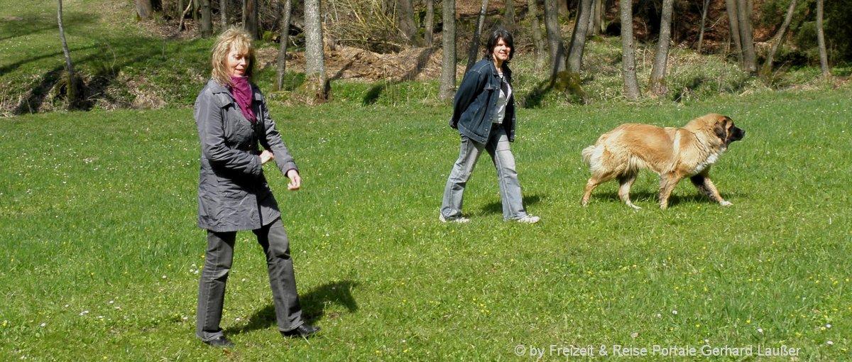 hund-ferienhaus-urlaub-mit-hund-oberpfalz-panorama