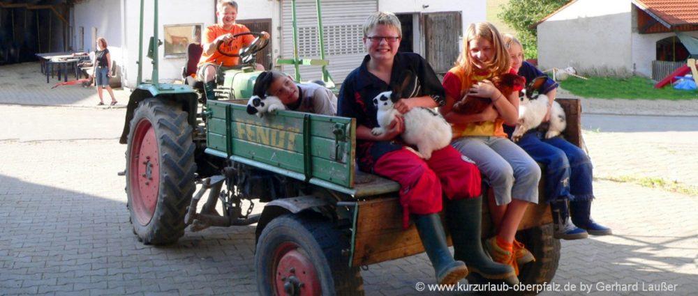 kinderbauernhof-oberpfalz-erlebnisbauernhof-traktor-fahren