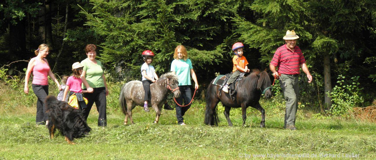 Reitställe in der Oberpfalz Reiterhöfe und Ponyhöfe Amberg und Schwandorf