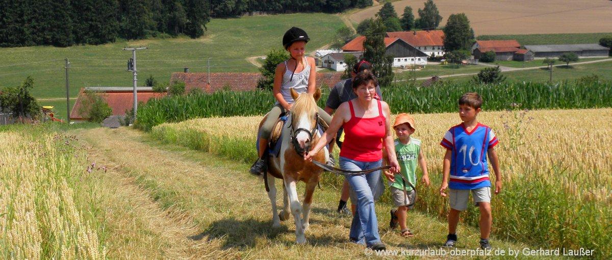 Reitställe in der Oberpfalz Reiterhof und Ponyhof